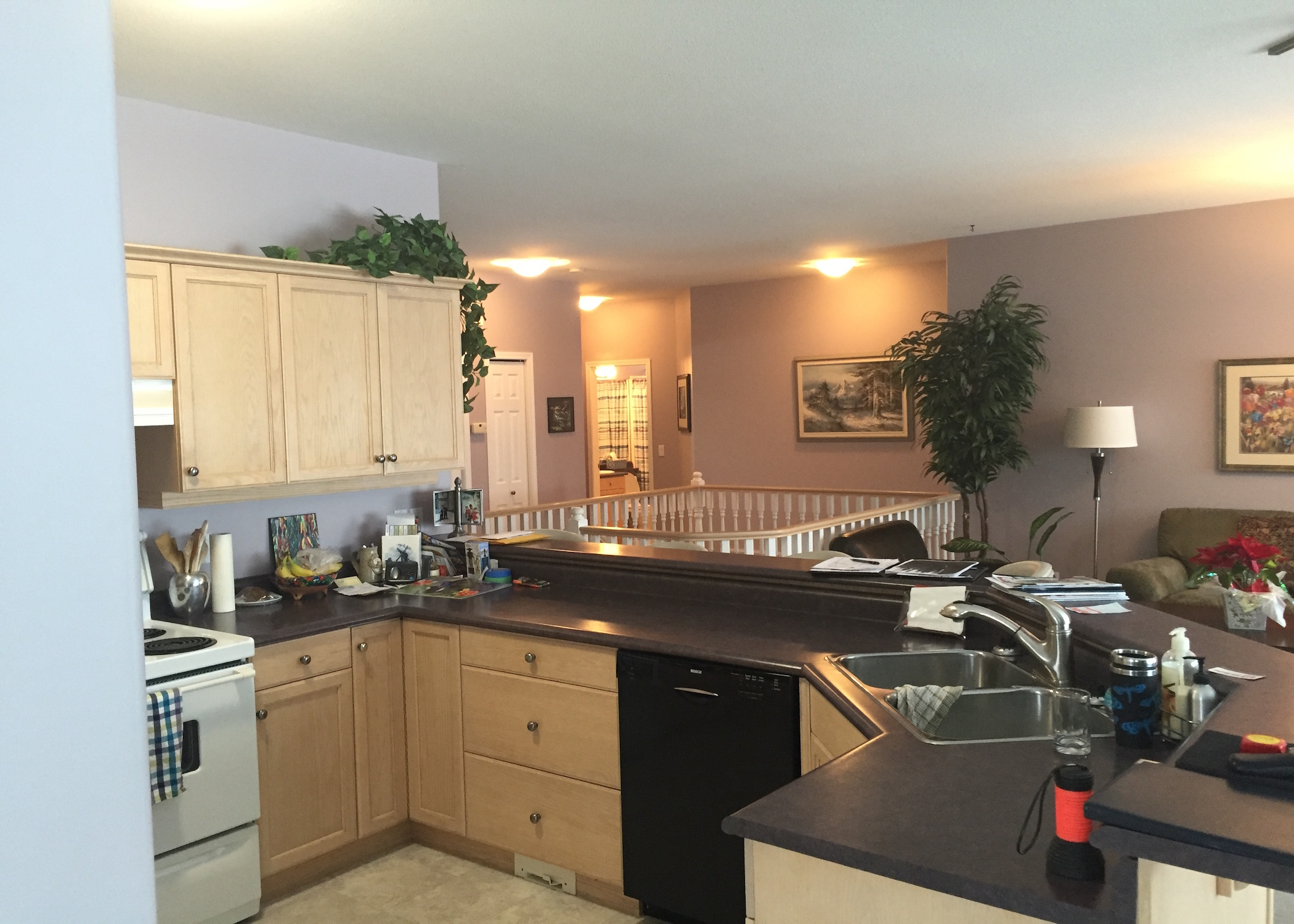 Before-Kitchen/Living